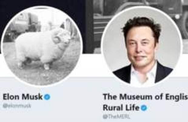 Музей английской сельской жизни поменялся твиттером с Илоном Маском