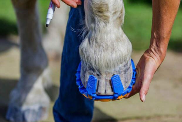 Пластиковая обувь для лошадей.