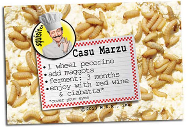 Сыр с живыми личинками внутри: странные кулинарные традиции жителей Сардинии