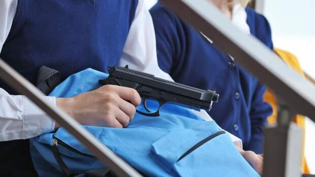 В России введут цифровой учет оружия и патронов