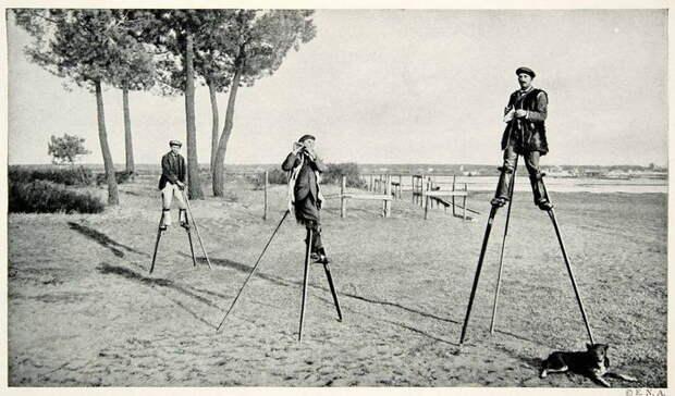 Как французы освоили непростое ремесло...