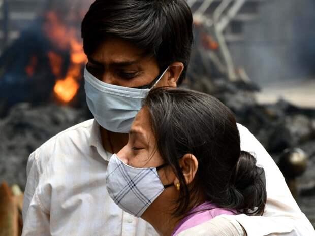 Новый штамм выдавит все остальные: чем грозит миру индийский коронавирус