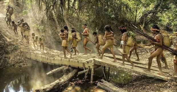 Затерянные в сельве: как живут люди ава — самый скрытный народ планеты
