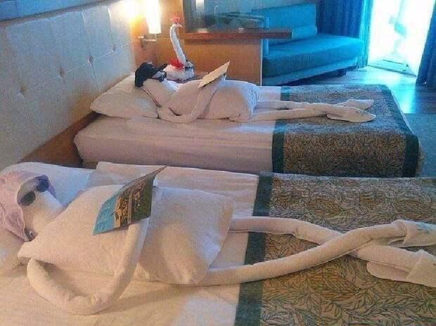 Когда уборщица в отеле действительно показала класс