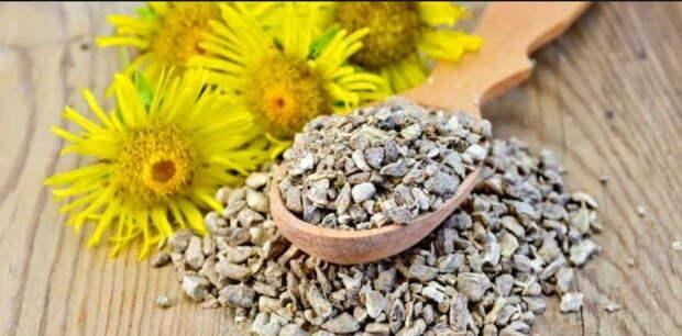 Отличные рецепты от хронического бронхита: из тетради врача
