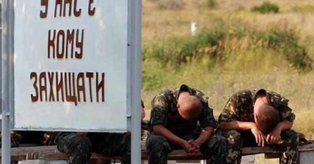 Кто такой украинский офицер?
