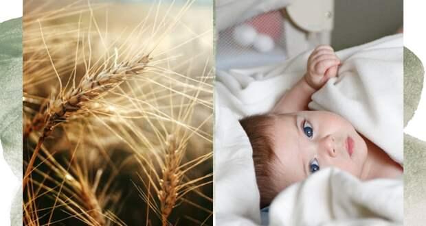 Можно ли «вылечить» непереносимость глютена у ребенка: новое исследование