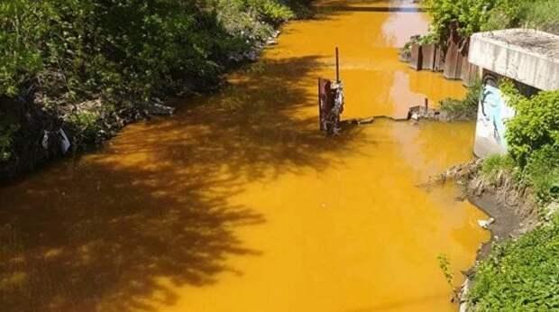 В украинской столице вновь зафиксировано серьезное экологическое бедствие
