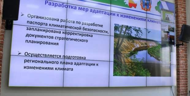 Ростовскую область адаптируют кизменениям климата