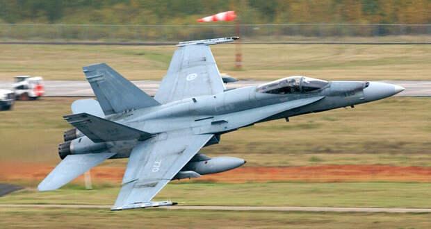 Канадские ВВС закупят «живые газонокосилки»