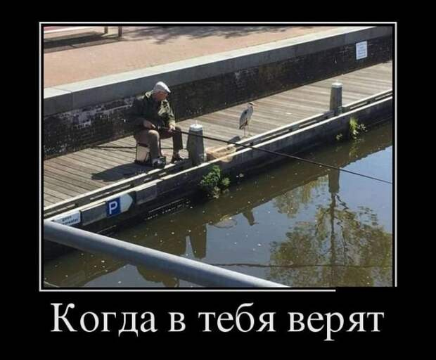 _R1vdkCzRQU