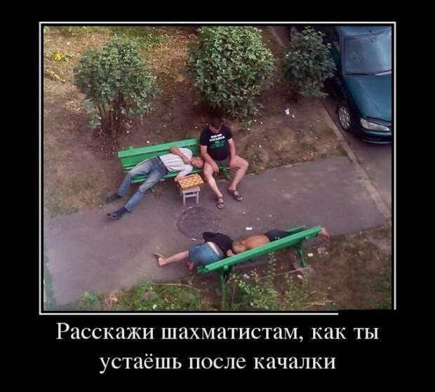 Смешные демотиваторы на утро (11 фото)