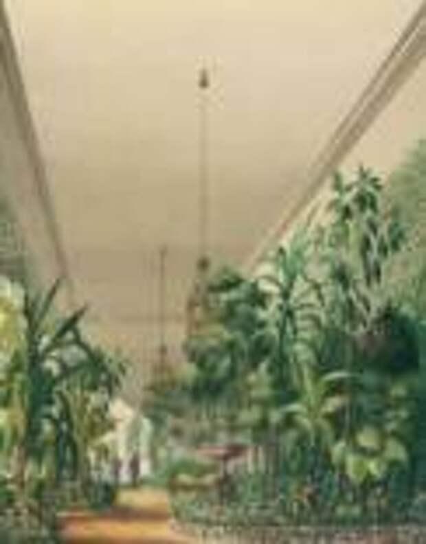 Выставка  «Мой чудный сад» откроется в музее-усадьбе Люблино