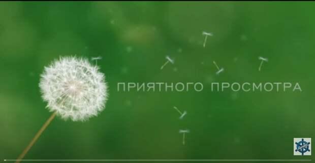 """""""Молодость по Страховке"""" ЗАРУБЕЖНЫЕ ФИЛЬМЫ"""