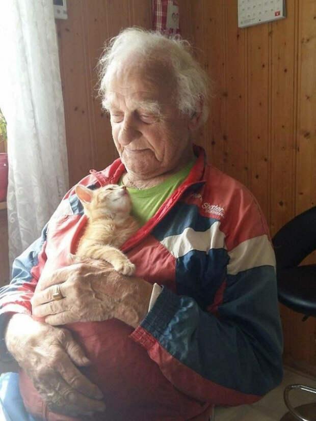 Фото, на которой домашние питомцы смотрят на своих владельцев с такой любовью, что это растопит сердце каждого