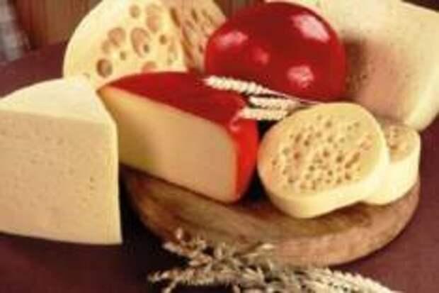Москвичей накормят сыром в музее Москвы