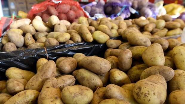 Врач Асанов посоветовал варить картофель в мундире для защиты от ОРВИ и COVID-19