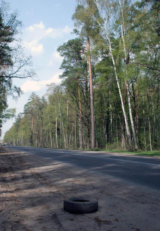 Аномальная дорога. /Фото:south-moskovia.livejournal.com