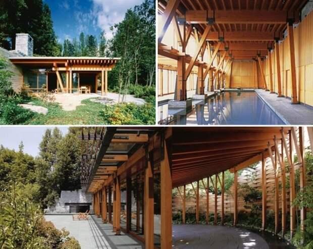 Весь комплекс сделан из дерева и прекрасно вписывается в окружающий ландшафт (Xanadu 2.0). | Фото: rb.ru.