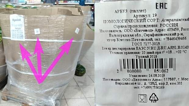 Советы специалистов: как не прогадать, покупая арбуз. Самые спелый и сладкий