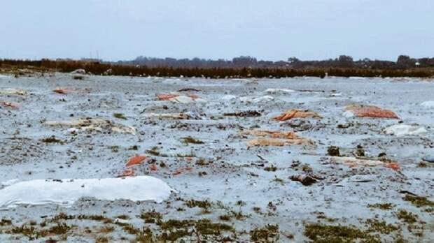 На берегу реки в Индии обнаружили сотни тайных захоронений