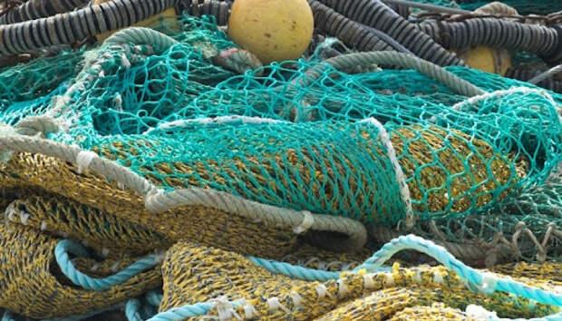 Мужчина может отправиться в тюрьму за незаконную рыбалку в Карелии