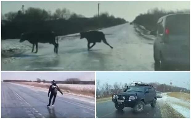 Гололед в Приморье парализовал дороги. А жители шутят