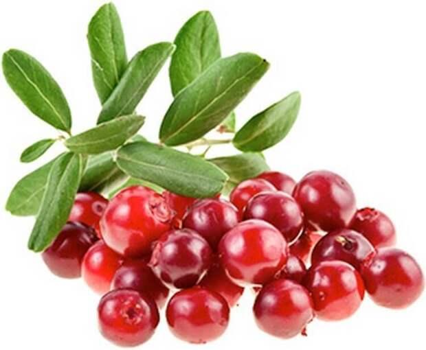Эти продукты прочистят артерии и защитят от сердечного приступа.