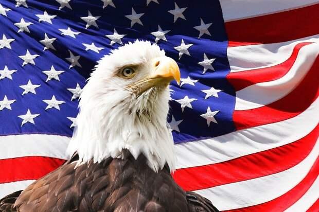 США в бешенстве из-за инцидента с Протасевичем: американцы готовят новые санкции