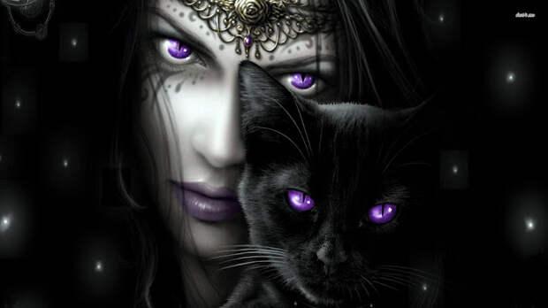 Кошачья Магия. Среди женщин встречается намного больше