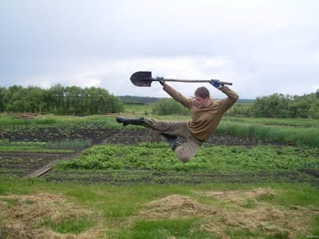 Три ошибки огородника, из-за которых болеет рассада