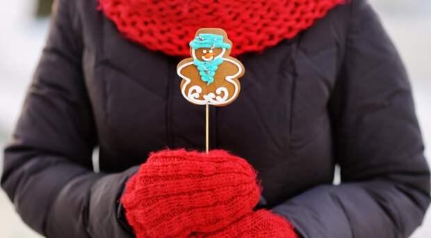 11 друзей Пряничного человечка или Идеи декора печенья к Новому году