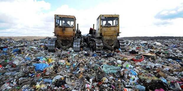 Госдума покопалась в мусоре?
