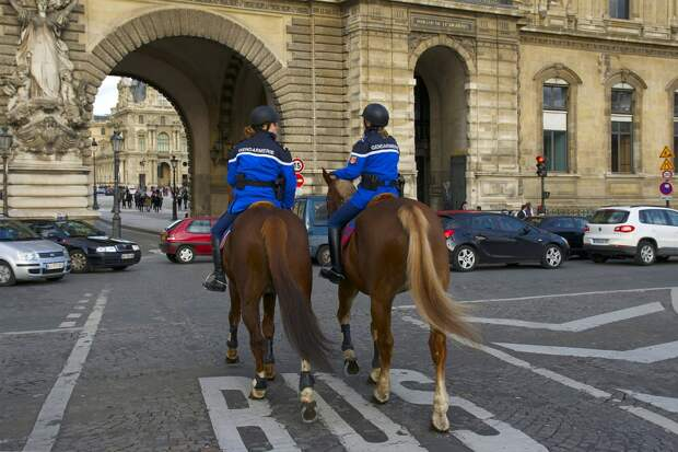 Во Франции предложили запретить снимать на фото и видео работающих полицейских