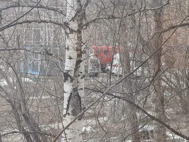 «Обследуют здания на предмет взрывных устройств». Эвакуация докатилась до ещё трех школ в Новосибирске