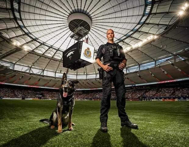 5 фото полицейских собак, которые выглядят дико круто