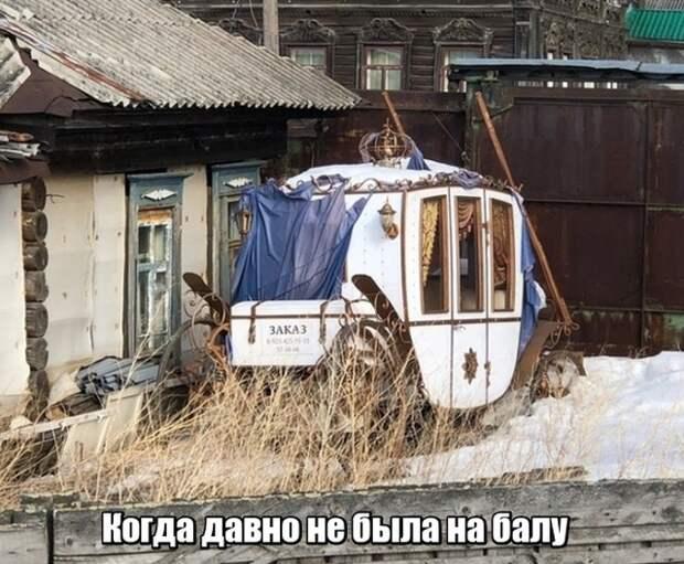 Подборка прикольных фото №2087 (41 фото)
