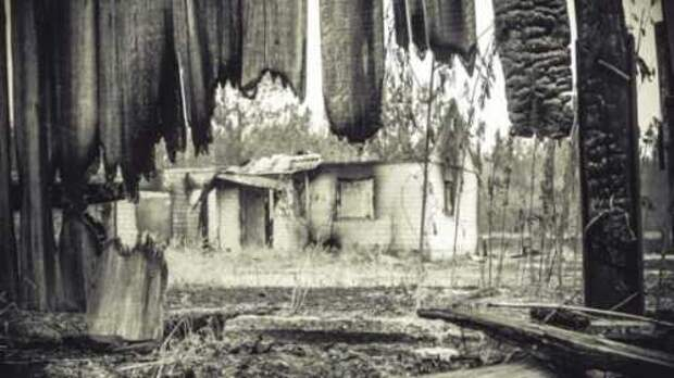 Людей просто бросили в огненном аду: правда о пожаре на Волчьем озере