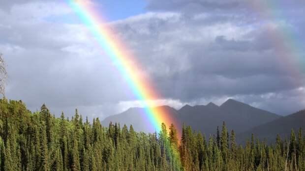 Жительница Приморского района Петербурга успела сделать фото мимолетной радуги