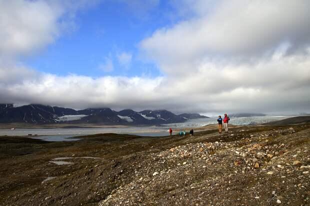 Россияне смогут бесплатно получить «арктический гектар»