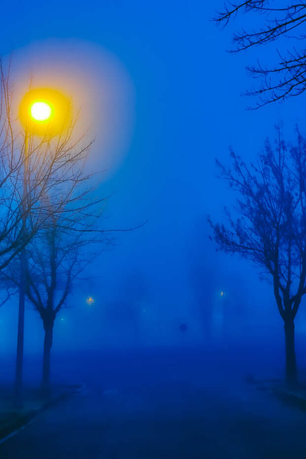 Blue Mornings by Blue Dahlia on 500px.com