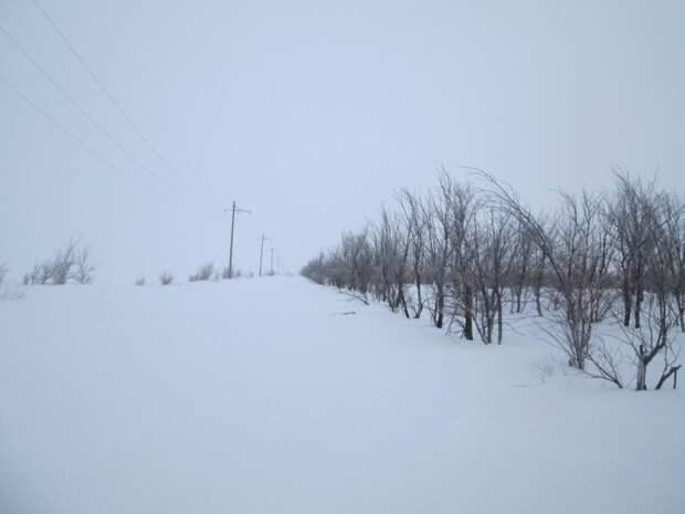 Что нам снег, что нам зной, что нам дождь...