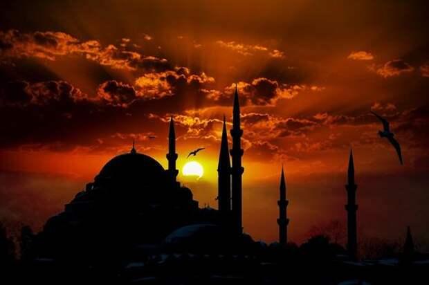 В Турции вводится полный локдаун