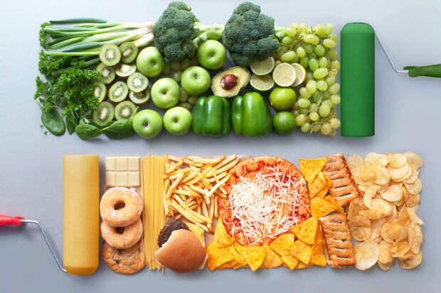 Расчет калорий —усвоение еды