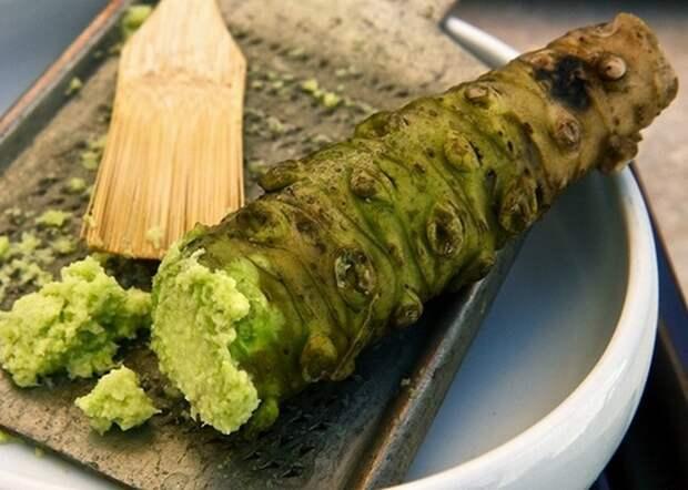 Удивительные и малоизвестные факты о суши, image #3