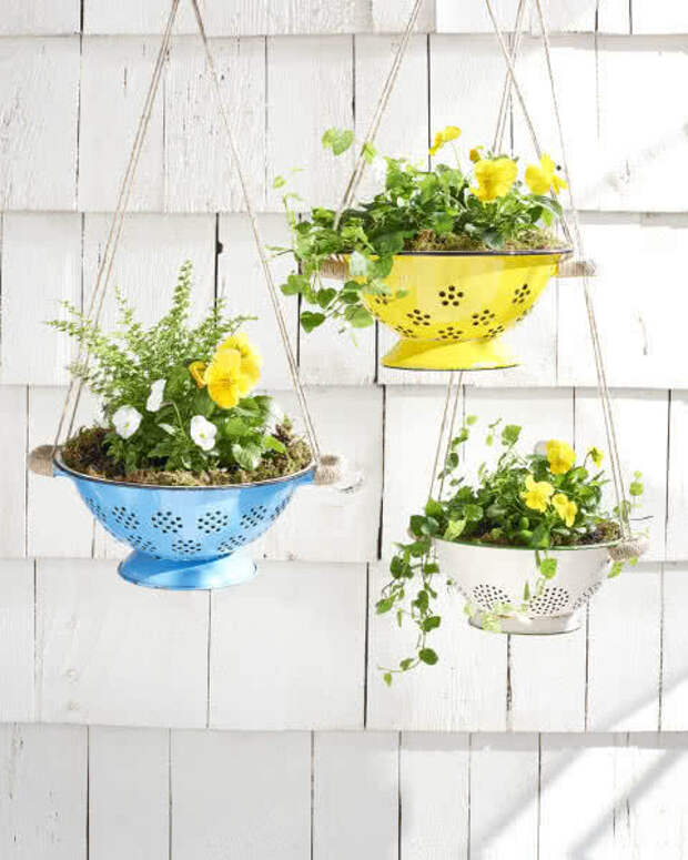 Домашние сады Семирамиды: 11 способов подвесить комнатные растения