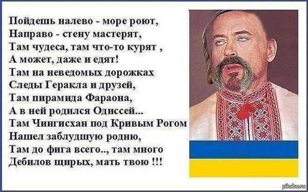 Украина-2021: собачьи парикмахеры из элиты и политическая география