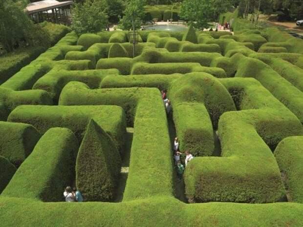 9 самых необычных живых лабиринтов в мире, по которым хочется побродить прямо сейчас