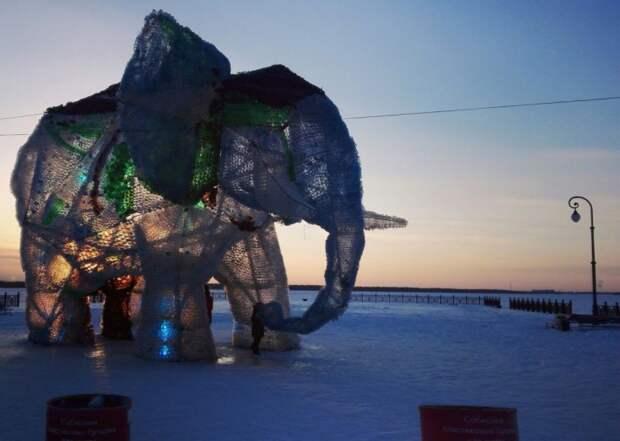 Слон из пластиковых бутылок в Архангельске