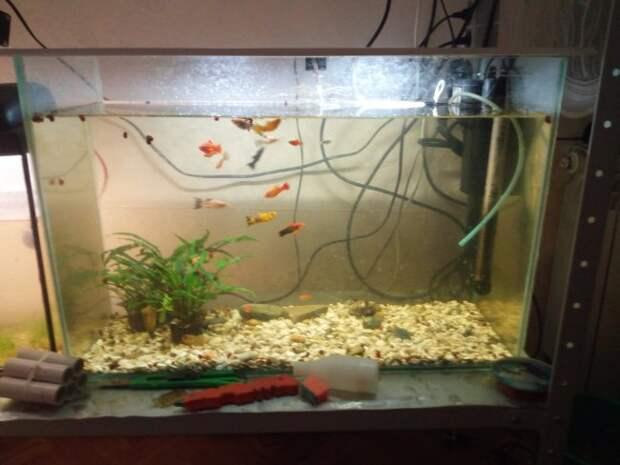Укрывная крышка для аквариума